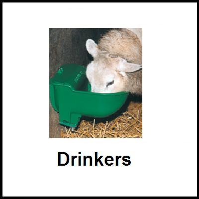 Sheep Drinkers