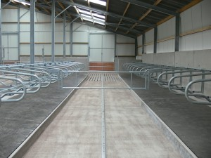 Cubicles with Comfort roll cow mat