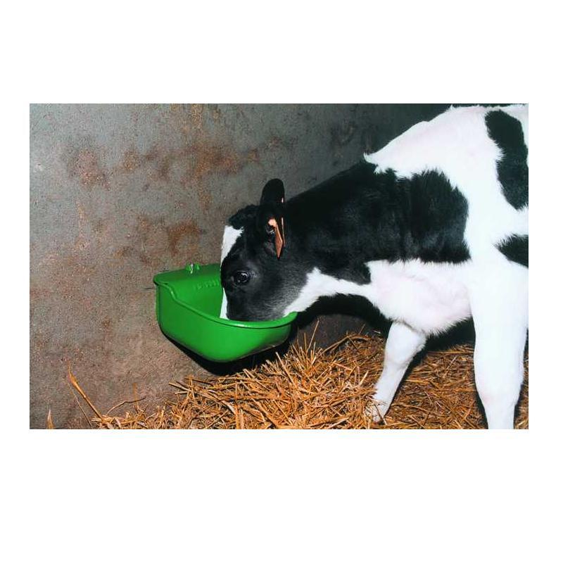 Lac 5 Calf