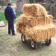 Calf Transporter Yard Mate