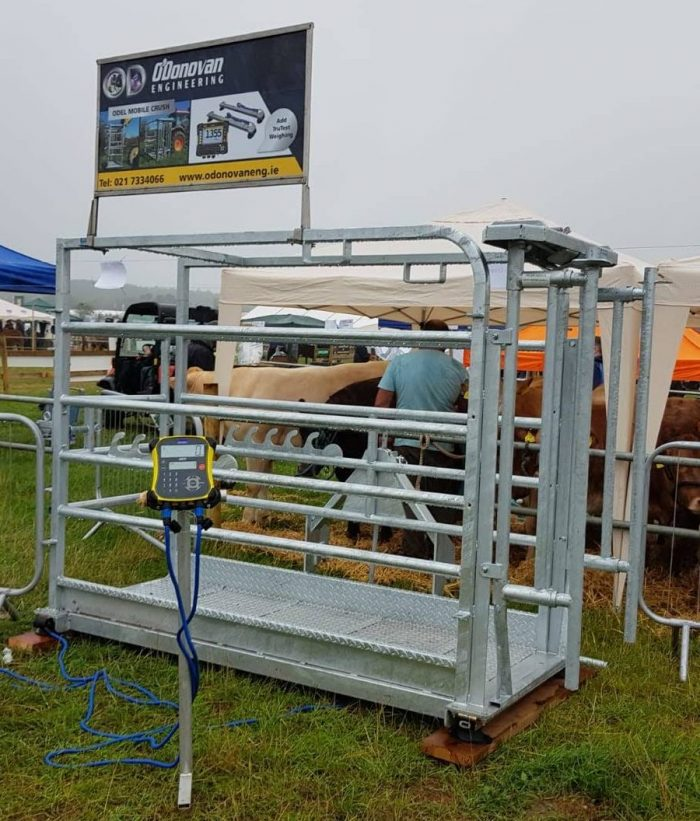 ODEL Mobile Cattle Weighing Crush