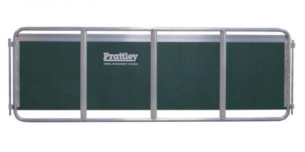 Prattley Handling Race