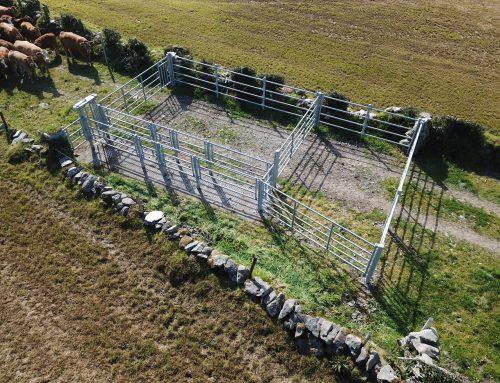 Livestock Handling Facilities