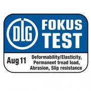 DLG Test