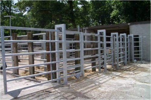 Zoo Penning