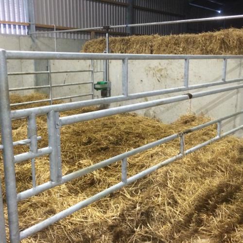 Horizontal calf feed gate