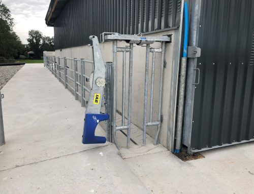 Cattle Handling Facilities – A Design And Fitting Guide
