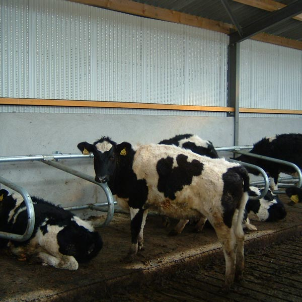 Weanling Cubicles