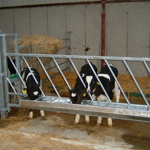 Calf Feed Barriers O Donovan Engineering Horizontal And