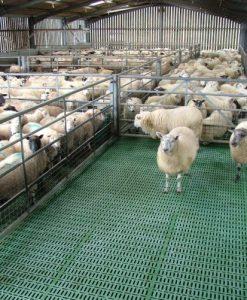 MIK Sheep slats