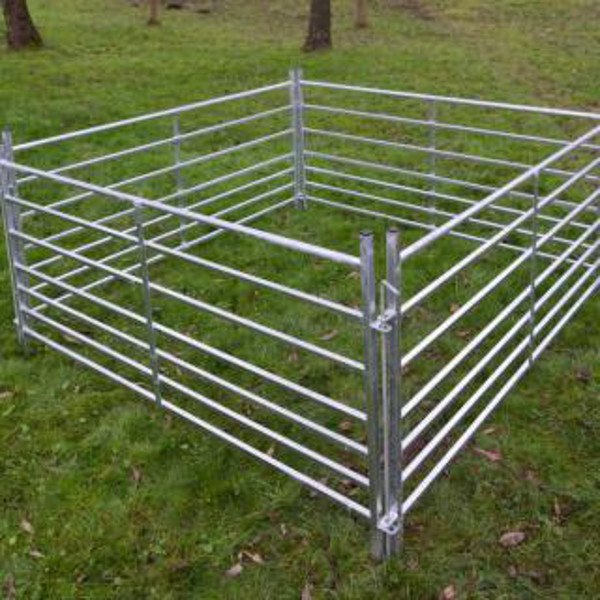 Sheep Hurdles