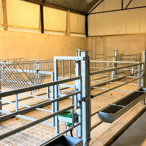 calf feed barriers