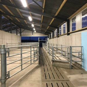 Parlour Exit Race & Handling Facilities