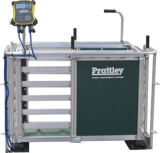 man weigh crate w isolating frame