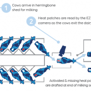 EZ-Heat-Herringbone