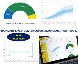 Datamars Livestock