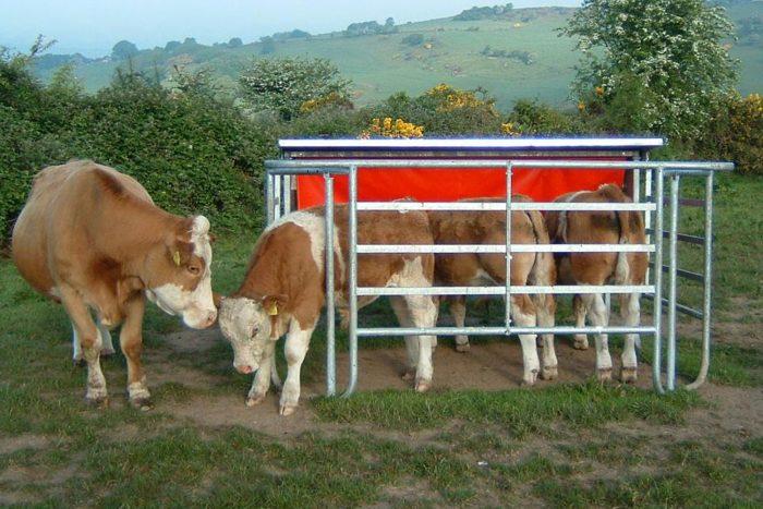 Mobile Calf Creep Feeder