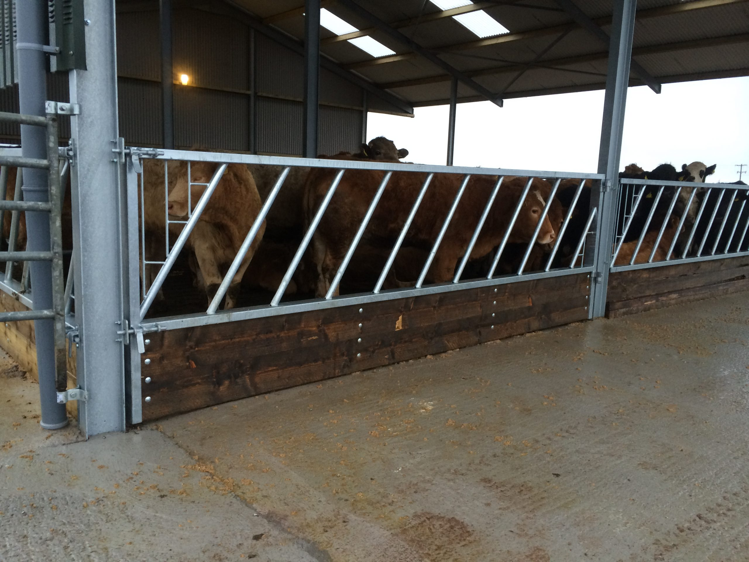 Hinged Feed Barrier Gate