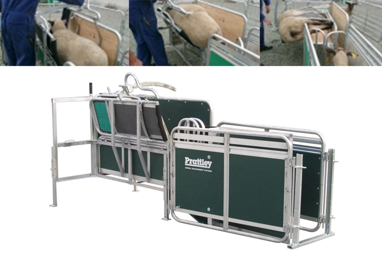 Prattley Sheep Handler