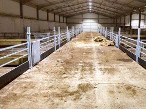 Sheep Housing