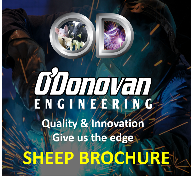 ODEL Sheep Brochure