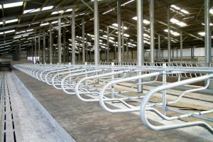 Cow Cubicle Mounting Options