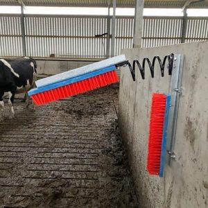 Kurtsan Fixed Cow Brush