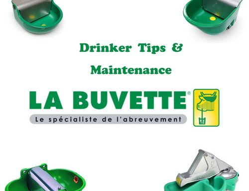 La Buvette Drinker Maintenance