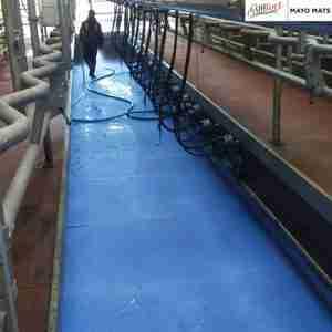 Dairy Parlour Mat