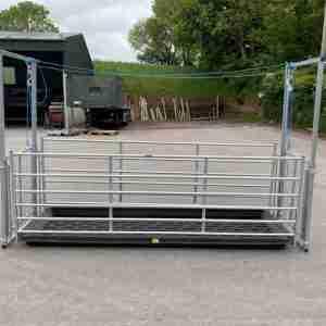 Sheep Footbath Race